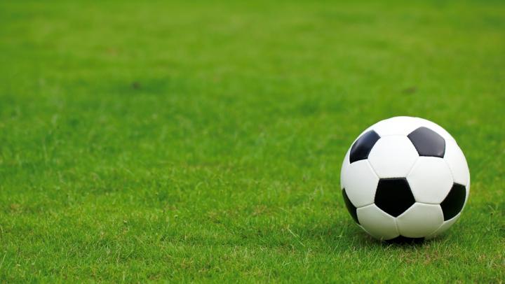Momente haioase pe teren! Un meci de fotbal, întrerupt de un câine şi o pisică (VIDEO)