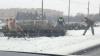 """Un """"infractor"""" neobişnuit a pus pe jar poliţia din orașul Sankt Petersburg (VIDEO)"""