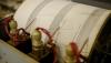 S-a zguduit Pământul! Un cutremur cu magnitudinea de 4,4 a avut loc în Vrancea
