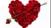 Compoziţii florale pentru îndrăgostiţi. Designerii se întrec în cele mai originale oferte