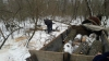 Un moldovean, prins în timp ce tăia ilegal mai mulţi copaci. Ce intenţiona să facă cu lemnele