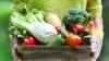 Nu toate produsele alimentare se ţin la frigiser. Uite lista şi ce spun specialiștii