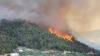 Stare de alertă în Australia: Peste 80 de focare de incendii de vegetaţie au scăpat de sub controlul pompierilor