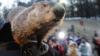 Marmota şi-a văzut umbra la ieşirea din vizuină. Ce înseamnă acest lucru