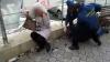 AU AGRESAT un bărbat în plină stradă. Doi suspecţi, încătuşaţi de poliţişti în Capitală (VIDEO)