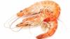 BINE DE ŞTIUT! Cinci beneficii unice ale uleiului de Krill din Korill