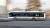 Primăvară, primăvară! O şoferiţă de troleibuz, surprinsă într-o IPOSTAZĂ NEOBIŞNUITĂ (FOTO)