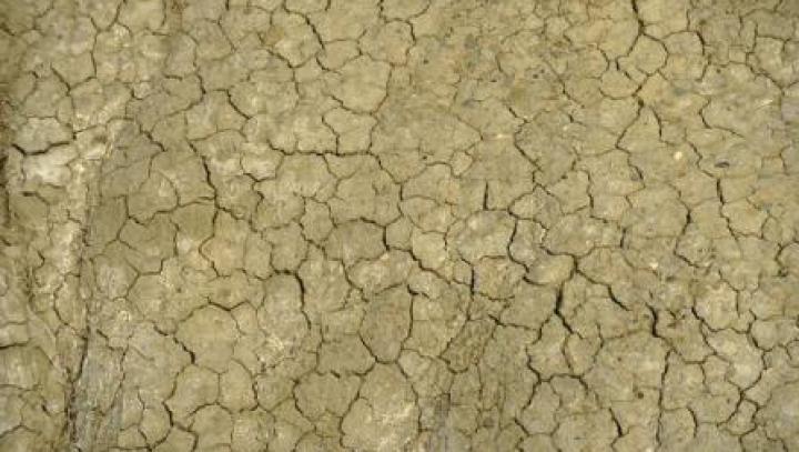 Circa 90% dintre dezastrele naturale sunt cauzate de inundații și secetă