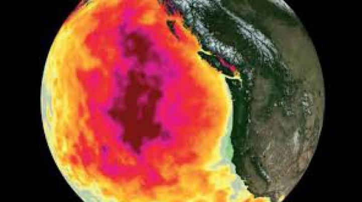 Cel mai neobişnuit eveniment meteorologic din ultimele decenii. Oceanul Pacific poate avea efecte devastatoare asupra climei