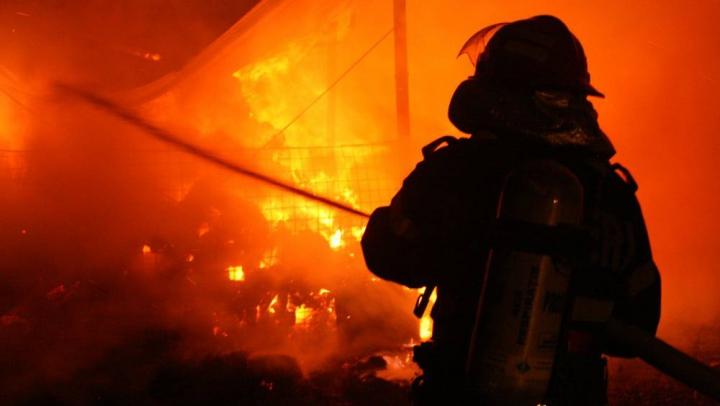 Incendiu la o fermă din Teleneşti. Peste 250 de vite au fost salvate din flăcări (FOTO)
