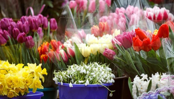 Frumoase şi parfumate: Ce simbolizează florile de primăvară