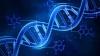 #LifeStyle: Cancer cauzat de erorile celulare. Ce spun experţii