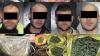 ÎNCĂTUŞAŢI pe o stradă din Capitală. Patru bărbaţi, suspectaţi de trafic de droguri în proporţii mari (VIDEO)