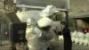 Poliția peruviană a ars 17 tone de cocaină. Drogurile au fost confiscate în timpul mai multor operațiuni