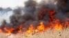 POT AVEA LOC TRAGEDII! Oamenii, ATENŢIONAŢI să nu dea foc la vegetaţia uscată sau la gunoiul menajer