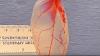 UIMITOR! O frunză de spanac a fost transformată în țesut cardiac funcțional. CUM e posibil (VIDEO)