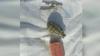 DESCOPERIRE PERICULOASĂ în comuna Băcioi. O femeie a găsit două GRENADE în podul casei (VIDEO)