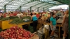 Piaţă agricolă MODERNĂ în raionul Rîşcani! Când vor începe lucrările de construcţie