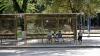 ATENŢIE! O staţie de troleibuz de pe bulevardul Ştefan cel Mare îşi schimbă locaţia
