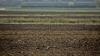 Mecanism nou de subvenţionare pentru moldovenii care vin din străinătate şi vor să investească în agricultură