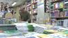 ZIUA MARILOR REDUCERI! O editură din Capitală îţi oferă - 50% la cărţi (VIDEO)