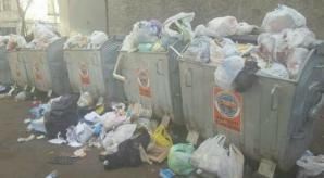 MORMANE DE GUNOI în Capitală. Tomberoanele sunt pline până la refuz (FOTO)