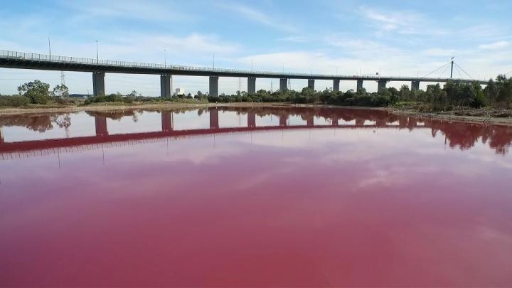 Un lac din Melbourne și-a schimbat culoarea! Cum este explicat fenomenul neobişnuit (VIDEO)