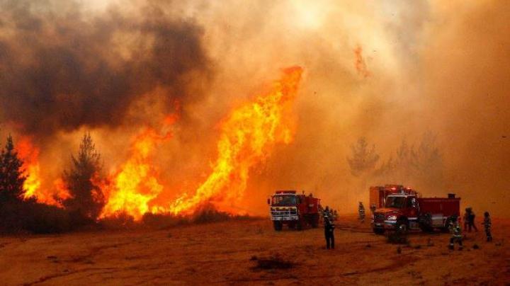 Incendii devastatoare în Chile. Mii de oameni, evacuaţi din calea flăcărilor
