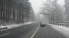 Ninge la munte! Imagini surprinse de martori oculari (VIDEO)