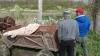 Doi tineri, reţinuţi de poliţiştii de frontieră după ce au vânat ilegal un mistreţ