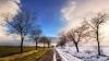 De la primăvară, la iarnă. Specialiştii ATENŢIONEAZĂ că ne putem îmbolnăvi. Cum ne tratăm (VIDEO)