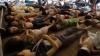 Primele analize arată că victimele atacului chimic din Siria au fost expuse la gaz sarin