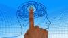A fost identificată zona din creier afectată de autism