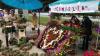 """Festivalului """"Parada florilor"""", la Cimișlia. Zeci de florari din țară au venit cu cele mai deosebite flori"""