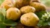 De ce nu e bine să cureți cartofii noi de coajă. Explicația te va surprinde