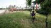 Peste 3.000 de cruci şi monumente de pe marginea şoselelor din ţară au fost demontate
