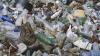 Parcurile şi pădurile din Bălţi SE ÎNEACĂ în gunoi! Explicaţiile autorităţilor