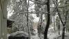Salvatorii au intervenit la lichidarea consecințelor viscolului în Cahul (VIDEO)