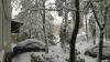 Igor Dodon a cerut ARMATEI să se implice in soluționarea problemelor cauzate de zăpadă în Republica Moldova