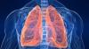 #LifeStyle: Descoperire revoluționară a cercetătorilor. Plămânii mai au înca o funcție