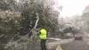 Între ploi şi ninsori. Vremea rea face prăpăd ţară (FOTO/VIDEO)