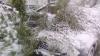 NOI INFORMAŢII privind lichidarea consecințelor în urma ninsorilor. Şedinţa, transmisă în direct de Publika
