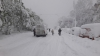 Chișinăul s-a rupt în două. MII DE COPACI S-AU PRĂBUȘIT sub greutatea zăpezii