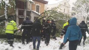 Viscolul şi ninsoarea continuă! Angajaţii INP lucrează în REGIM SPORIT. Câte DERAPĂRI și ACCIDENTE au fost înregistrate