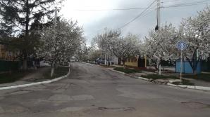 """În oraşul Rezina a apărut un indicator """"hibrid"""". Şoferii, puşi în dilemă (FOTO)"""
