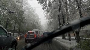 Troleibuze BLOCATE pe strada Gheorghe Asachi din Capitală (VIDEO)