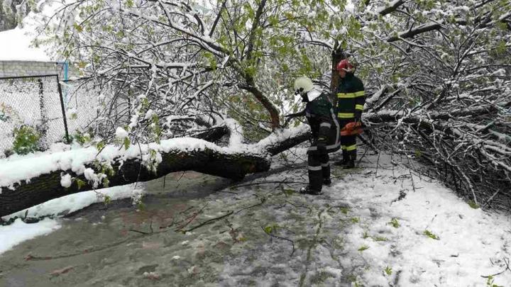 Serviciile de urgență, DISPONIBILE pentru cetăţenii aflaţi în situaţii de criză (FOTO)