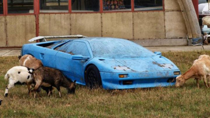 Au găsit un Lamborghini pe un câmp. Când au văzut ce se află înăuntru au rămas UIMIŢI
