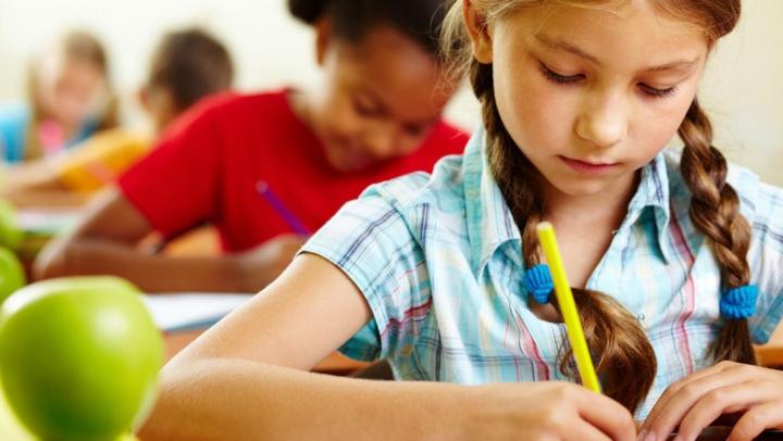 Problema şcolilor cu predare în grafie latină din Transnistria, pe agenda de lucru a viceprim-ministrului