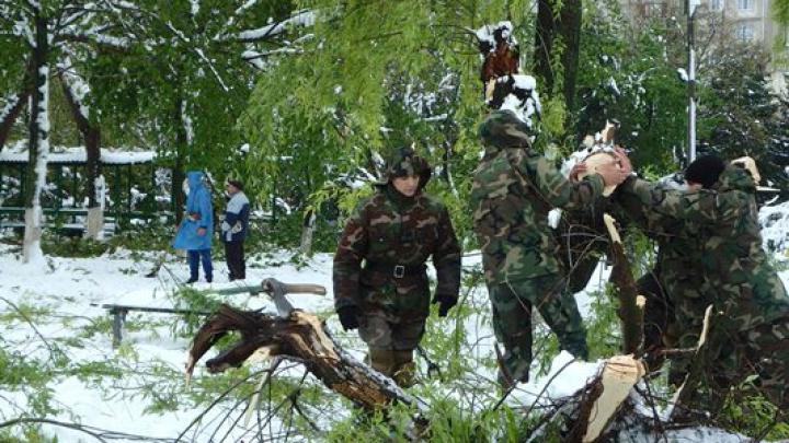 Armata Naţională continuă să intervină  în zonele afectate de ninsori